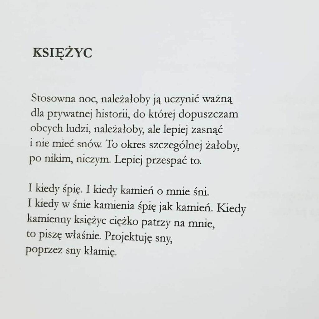 poezja - świetlicki - księżyc